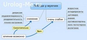 Схема повышения либидо у мужчин